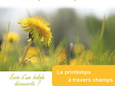 Le-printemps-a-travers-champs.jpg
